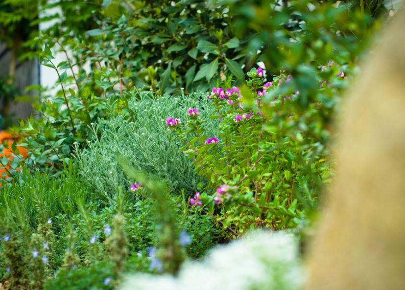 jardin extremadura 5