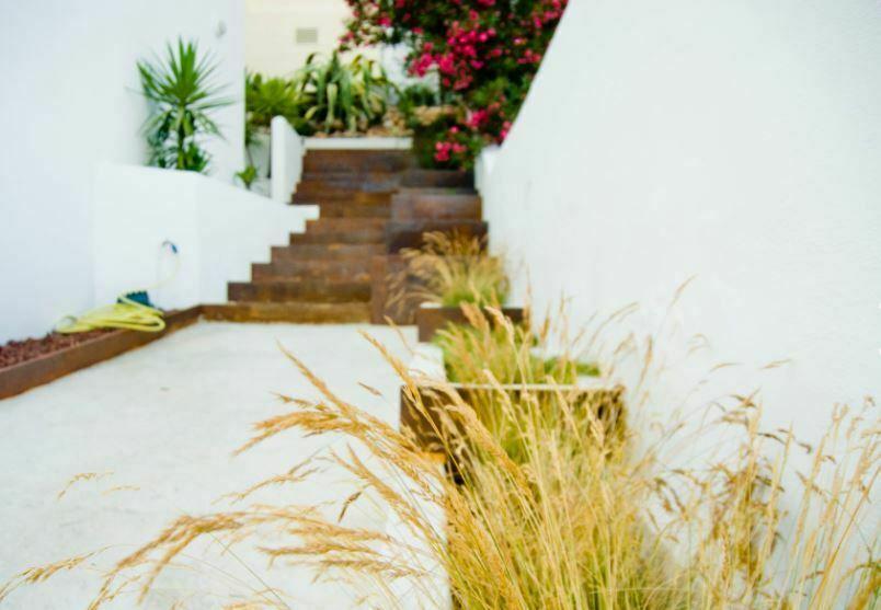 jardin minimalista 1