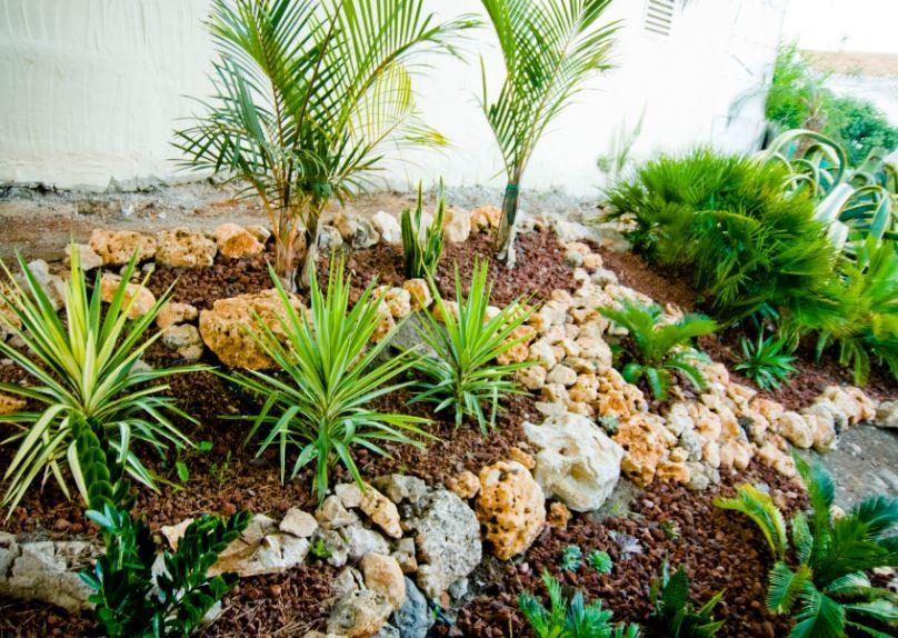 jardin minimalista 6