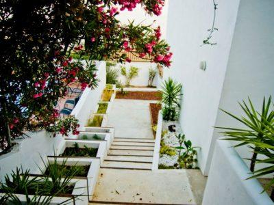 jardin minimalista 4